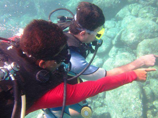scuba diving at murudeshwar by wild woods spa & resort