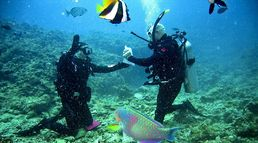 Best places for scuba diving in ind...