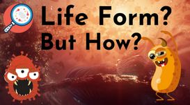 Existence Of Living Organisms In The Quantum Realm
