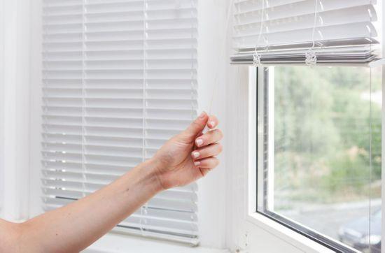 Choose window blinds