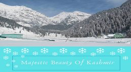 Majestic Beauty of Kashmir