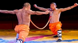 Myths and Facts about Shaolin Monks