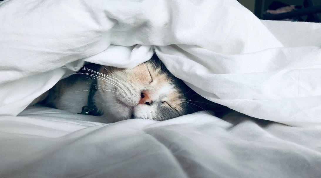 poor sleeping