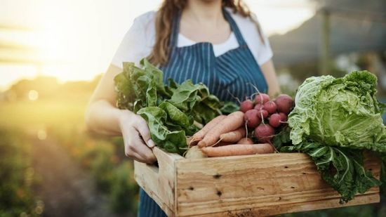 Sustainable food options