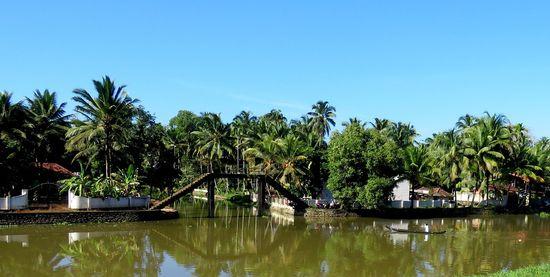 Kuttanad – Rice Bowl Of Kerala
