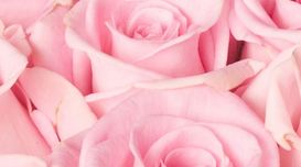 What Are The Benefits Of Rosewater ...